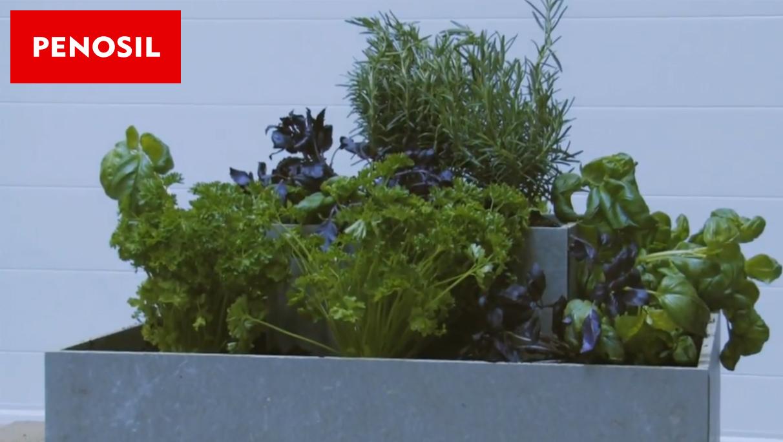 Cum să-ți faci singur o jardinieră?